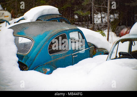 A  blue 1964 Volkswagen Beetle, burried in the snow, in a wooded area, in Noxon, Montana.  This image was shot with an antique Petzval lens and will s - Stock Image