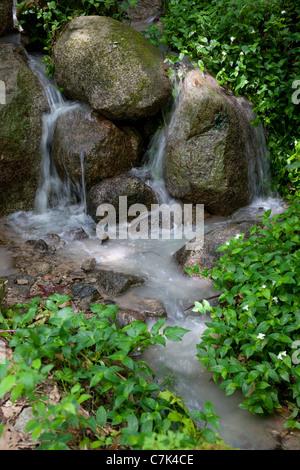 Portugal, Algarve, Caldas De Monchique, Stream - Stock Image