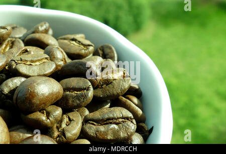 Cup of coffe full with coffe beans - Stock Image