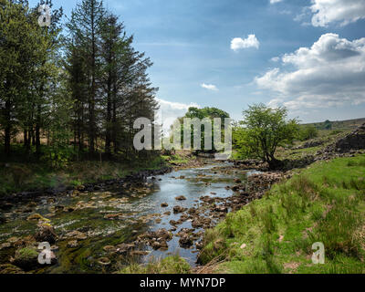 The river Hepste (Afon Hepste) at Tir-yr-onen, near Penderyn, Brecon Beacons, Wales, UK - Stock Image