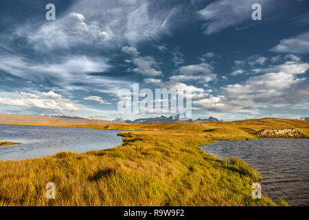 Serene landscape with water surface, snowy mountains and yellow grass. Altai mountains, Siberia, Russia - Stock Image