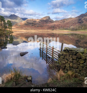 Blea Tarn during autumn, with Langdale Pikes in the background, Little Langdale, Lake District National Park, Cumbria, - Stock Image