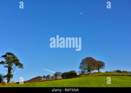 Devon countryside view with rolling green hills, trees view, near Cadbury, Bickleigh, UK - Stock Image
