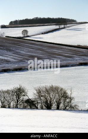 Chilterns Landscape Hertfordshire - Stock Image