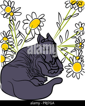 Tranquil dog.  illustration of sitting tranquil dog between of daisies. - Stock Image