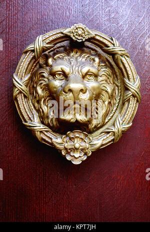 Single golden coloured brass lions head door knocker and vintage antique wooden door in dark burgundy red - Stock Image