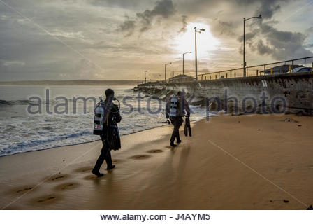 Scuba divers in wet suits enter the water in early morning from the beach beside the U.S. Coast Guard pier in Monterey, - Stock Image