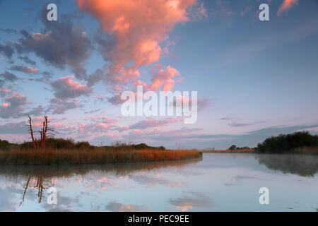 Cloudy mood in the morning at the river Peene, Nature Park Peental, Mecklenburg-Western Pomerania, Germany - Stock Image