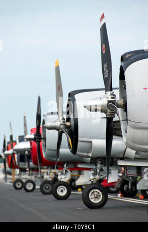 A line of World War Two-era warplanes parked at the Oshkosh, Wisconsin airport. Photographed at a public airport. - Stock Image