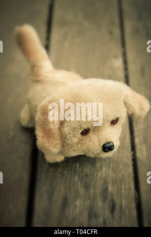 abandoned stuffed puppy toy dog - image for book cover - Stock Image