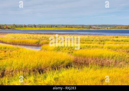Coastline, East Linden, Sunrise Trail, Nova Scotia, Canada - Stock Image