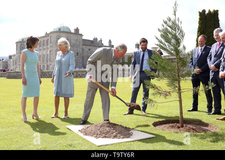 The Prince of Wales plants a tree during a visit to Powerscourt House and Gardens in Enniskerry, Co Wicklow, on the first day of their visit to Ireland. - Stock Image