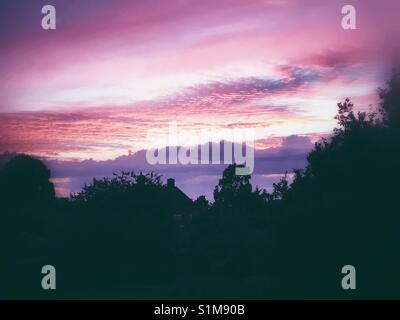 Pink violet sky at sunset - Stock Image