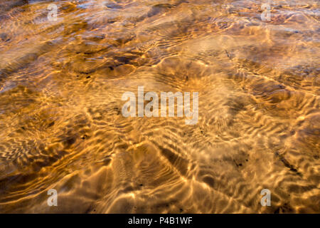 Tannin colored water ripples over sand ,Everglades National Park, Miami, Florida, USA - Stock Image