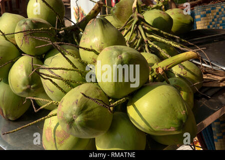 Cambodia, Kampot Province, Kep, beach, refreshing locally grown young coconuts  to drink for sale - Stock Image