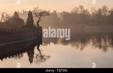Odra river and tree on Ostrow Tumski in the morning fog. Sunrise over river. Wroclaw. - Stock Image
