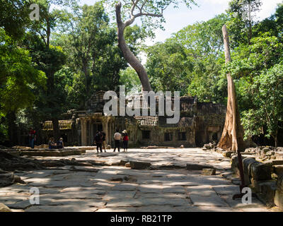 Ruins of Ta Prohm modern name of Angkor temple Siem Reap Province Cambodia, built in the Bayon style in  1186 A.D Buddhist temple - Stock Image