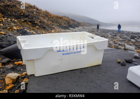 Plastic waste litter and rubbish including a Brixham fishing trawler box on the famous Jurassic coast beach between Charmouth and Lyme Regis in West D - Stock Image