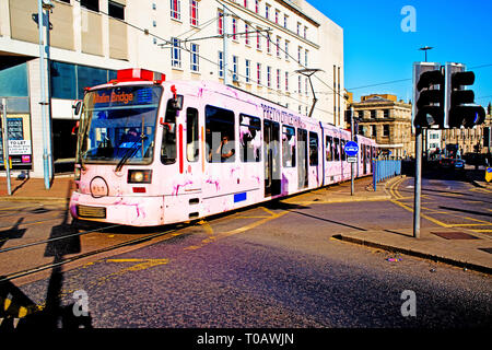 Pink Liveried Tram, Sheffield, England - Stock Image