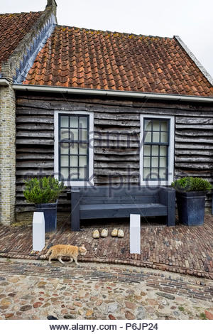 A cat walks by wooden shoes in front of an old house with shiplap siding in Vesting Bourtange, The Netherlands. - Stock Image