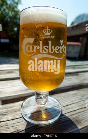 A half pint glass of Carlsberg Danish Pilsner Lager on an outside table in spring  in North Yorkshire England - Stock Image