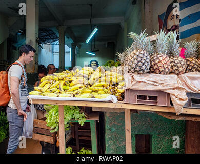 Bananas and pineapples for sale in a fruit shop under the portraits of Fidel Castro and Che Guevara on the back streets of Havana, Cuba - Stock Image