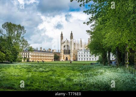Kings College chapel. Cambridge University, Cambridgeshire, England. UK. - Stock Image