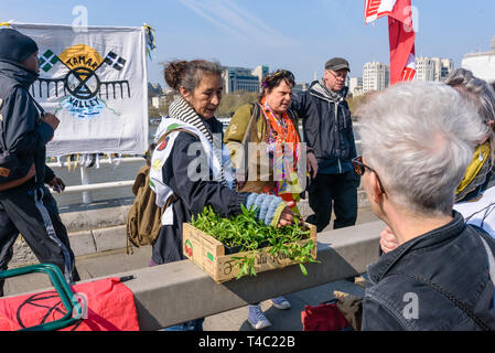 London, UK. 15th April 2019. Waterloo Bridge was closed to traffic by Extinction Rebellion activists who were bringing trees and plants and to turn it into a 'Garden Bridge'. They intend to keep the bridge closed to vehicles until the government takes necessary action on the global climate and ecological emergency. They say it must tell people the truth about the disaster we are facing, halt biodiversity loss, reduce greenhouse gas emissions to net zero by 2025, and set up and be led by a Citizen's Assembly on climate and ecological justice. Peter Marshall/Alamy Live News - Stock Image