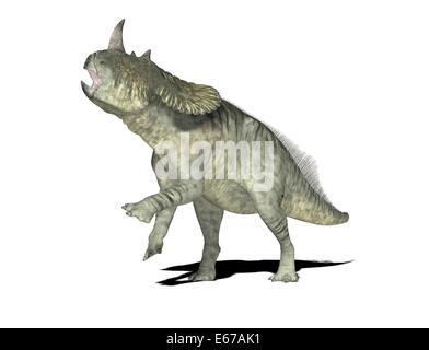 Dinosaurier Brachyceratops / dinosaur Brachyceratops - Stock Image