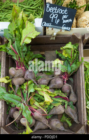 Fresh Beetroot for sale in a North Yorkshire Greengrocers shop priced 99p per bunch Class 1 France - Stock Image