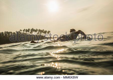 Silhouette of man surfboarding in the Indian ocean, Sri Lanka - Stock Image