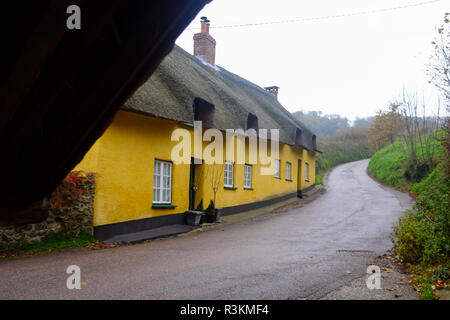 Thatched yellow cottages at Branscpmbe village in East Devon UK - Stock Image