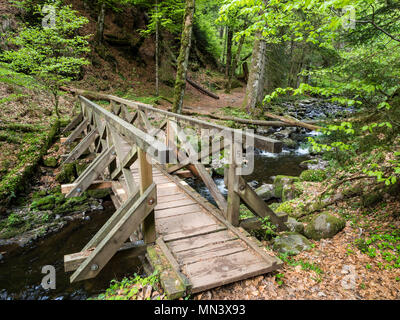 Hiking path with bridge in Ravenna gorge, near Hinterzarten, Black Forest, Baden-Württemberg, Germany - Stock Image