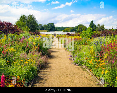 Helmsley Walled Garden with a fine show of summer flowers along the central pathway - Stock Image