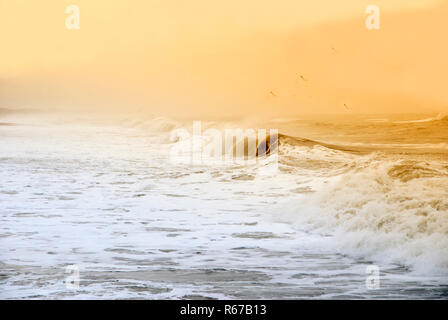 View of Ocean - Stock Image