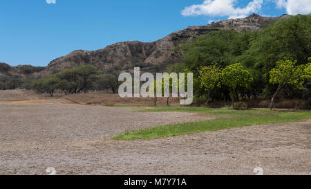Horizontal shot of the tranquil landscape inside the Diamond Head crater, an extinct volcanic cone near Waikiki, - Stock Image