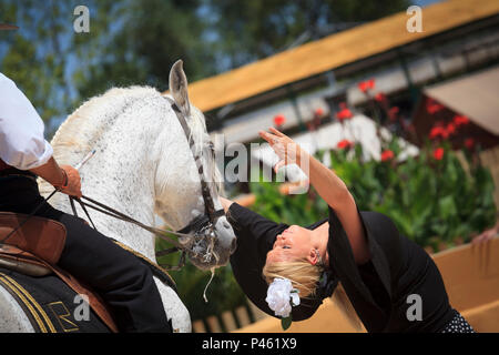 Spanish Flamenco dancing with horse and female dancer - Stock Image
