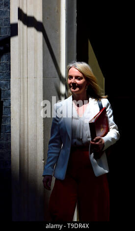 Liz Truss MP, Chief Secretary to the Treasury, leaving 10 Downing Street after a cabinet meeting, May 2019 - Stock Image