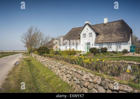 Frisean house, Archsum, Sylt, Schleswig-Holstein, Germany, Europe - Stock Image