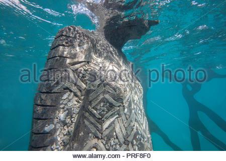 Sea level markers on statue at the Coralarium in Maldives - Stock Image