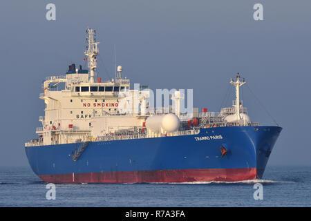 LPG Tanker Trammo Paris - Stock Image
