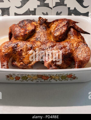 Grilled spatchcock chicken, in a serving dish on a white quartz kitchen counter with decorative tile backsplash. USA. - Stock Image