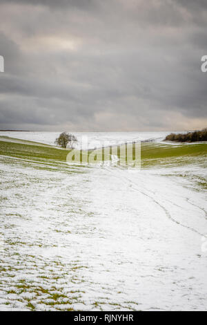 Landscape in the South Downs National Park during winter 2019, Hampshire, England, UK - Stock Image