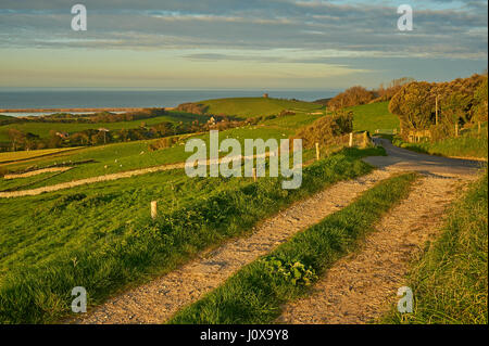 An early morning view across the rolling Dorset landscape towards St Catherine's Chapel and the small village - Stock Image