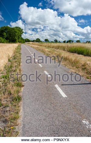 Beautiful bicycle road on Oland,Sweden. Summer clouds on blue sky. - Stock Image