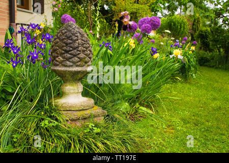 A garden in Friuli Venezia Giulia, north east Italy, featuring irises and alliums - Stock Image