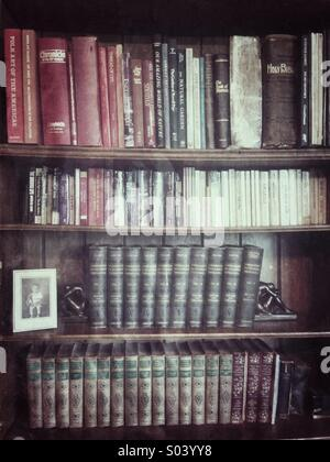 Books on a shelf in a home library - Stock Image