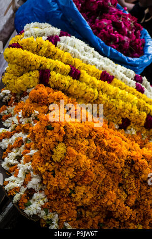 Indian flower garlands for sale in a market in India - Stock Image
