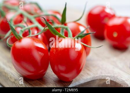 Vine of fresh ripe red cherry prunella tomates close up - Stock Image