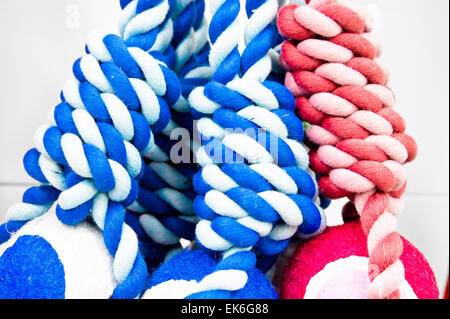 Red and blue rope toys close up as a background image - Stock Image